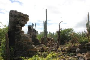 Ruine Zorgvlied auf Curacao