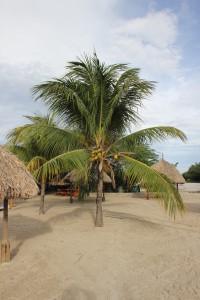Curacao-Daaibooibaai-Strand