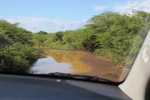Überschwemmter Weg im Christoffel Park auf Curacao