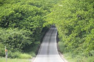 Weg naar Westpunt Curacao