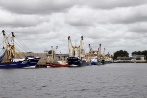 Fischkutter im Hafen von Vlissingen