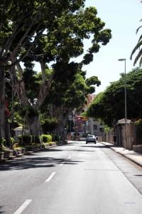 Rambla Franco - Straße in Santa Cruz