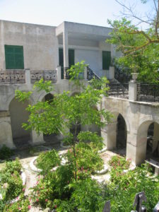 Pflanzen in Altstadt Fira Santorin