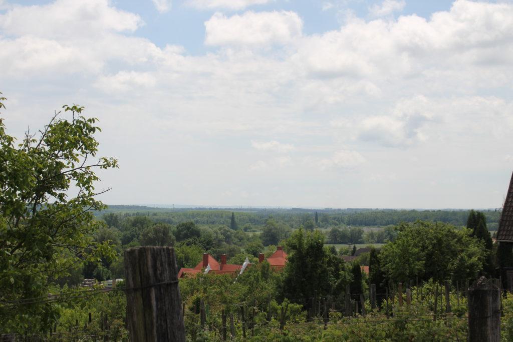 Blick vom Weinberg in Heviz